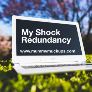 MY SHOCK REDUNDANCY