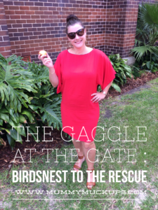 THE GAGGLE AT THE GATE : BIRDSNEST TO THE RESCUE