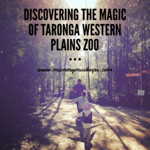 DISCOVERING THE MAGIC OF TARONGA WESTERN PLAINS ZOO
