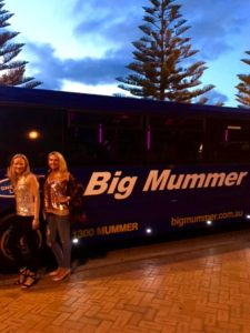 THE WHEELS ON THE BUS : Riding the Big Mummer Party Bus